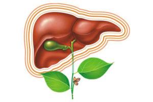Как лечить гепатит В в домашних условиях