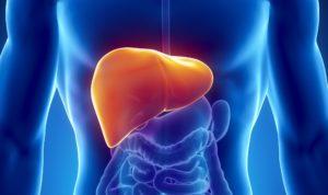 Симптомы и лечение воспаления печени