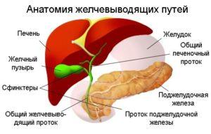 лечение дисфункции желчного пузыря