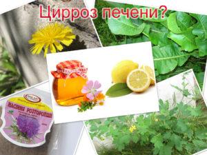 Какие народные средства выбрать для эффективности лечения цирроза печени