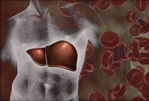Какие основные симптомы болезни Боткина и лечение