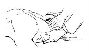 пальпация желчного пузыря